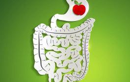 Dysbakterióza střev a její náprava