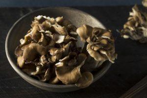 houba maitake v misce na tmavém podkladu
