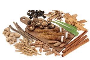 skupina adaptogenních potravin