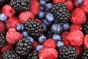 Co jsou nutraceutika a jaký mají význam