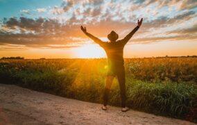 Hlíva ústřičná pro zdraví – jak ji konzumovat