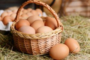 vejce od šťastných slepic